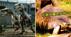 音效師透露《侏儸紀公園》其實應該要是「限制級電影」  迅猛龍的叫聲太母湯了