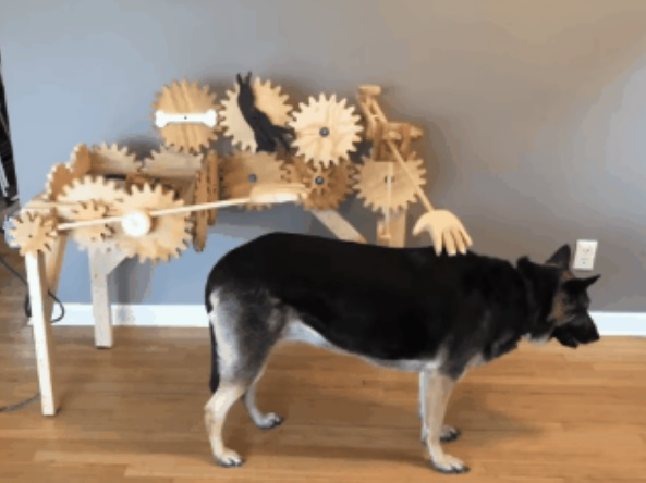 影/自己撸自己!鏟屎官發明「全自動撸摸摸神器」 小型犬也去體驗...反應太爆笑