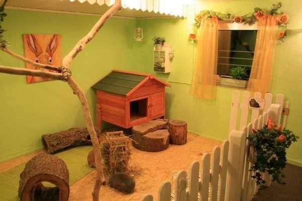 25張證明「學會投胎真的比較重要」的超豪華寵物屋 小兔子的公主城堡太浮誇❤