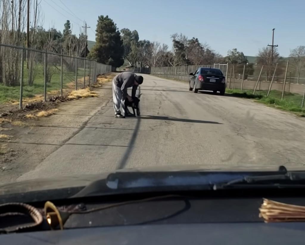 黑汪「以為只是在玩」卻被主人留下 車子啟動後「牠轉身狂奔」讓目睹的路人哭慘...