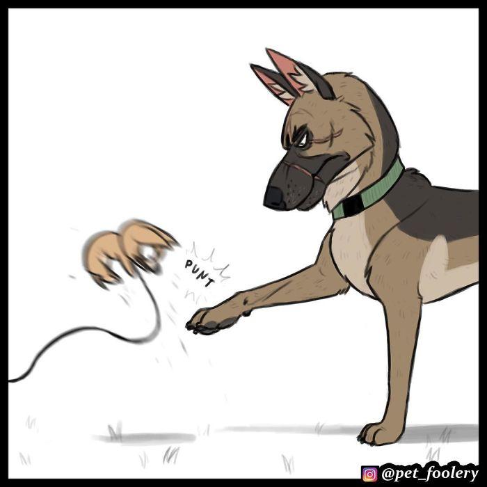 貓狗漫畫再推新系列!單純貓傻傻落水 傲嬌狗的「霸氣反應」讓人戀愛了❤