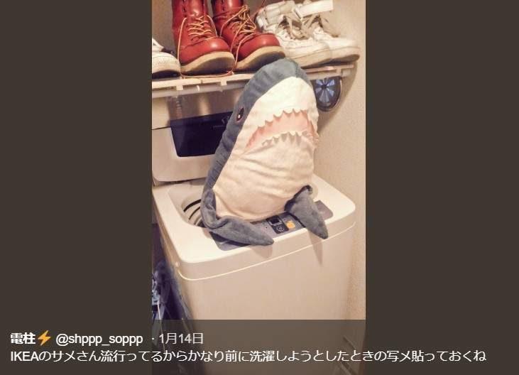 「IKEA鯊魚抱枕」莫名爆紅後「強勢侵入人類生活」 連房子主人都被它取代了!