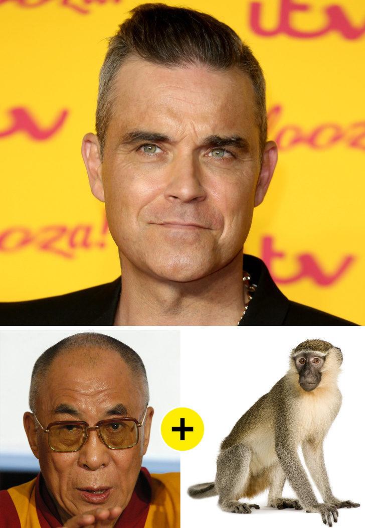 10個A咖明星演唱會「超詭異的私人癖好」 羅比威廉斯休息室一定要有「活的猴子」