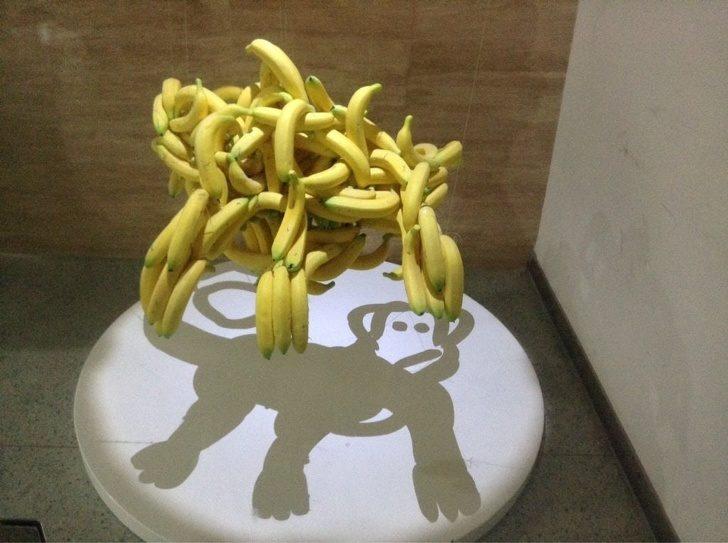 22張讓你「看完腦子打結5分鐘」的刷新三觀超猛照片 香蕉的影子變猴子了!