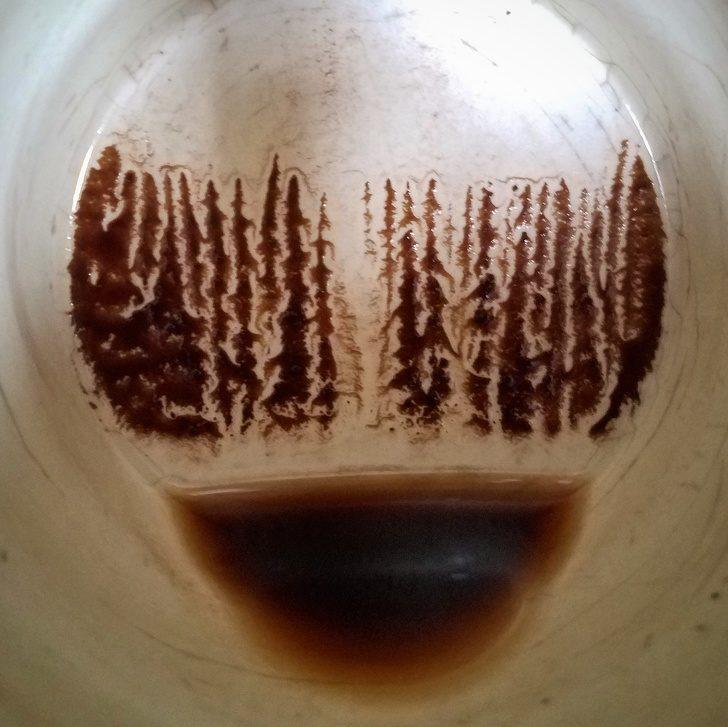 25個「失敗成就的美」證明人生永遠有希望 咖啡喝完杯底出現森林!