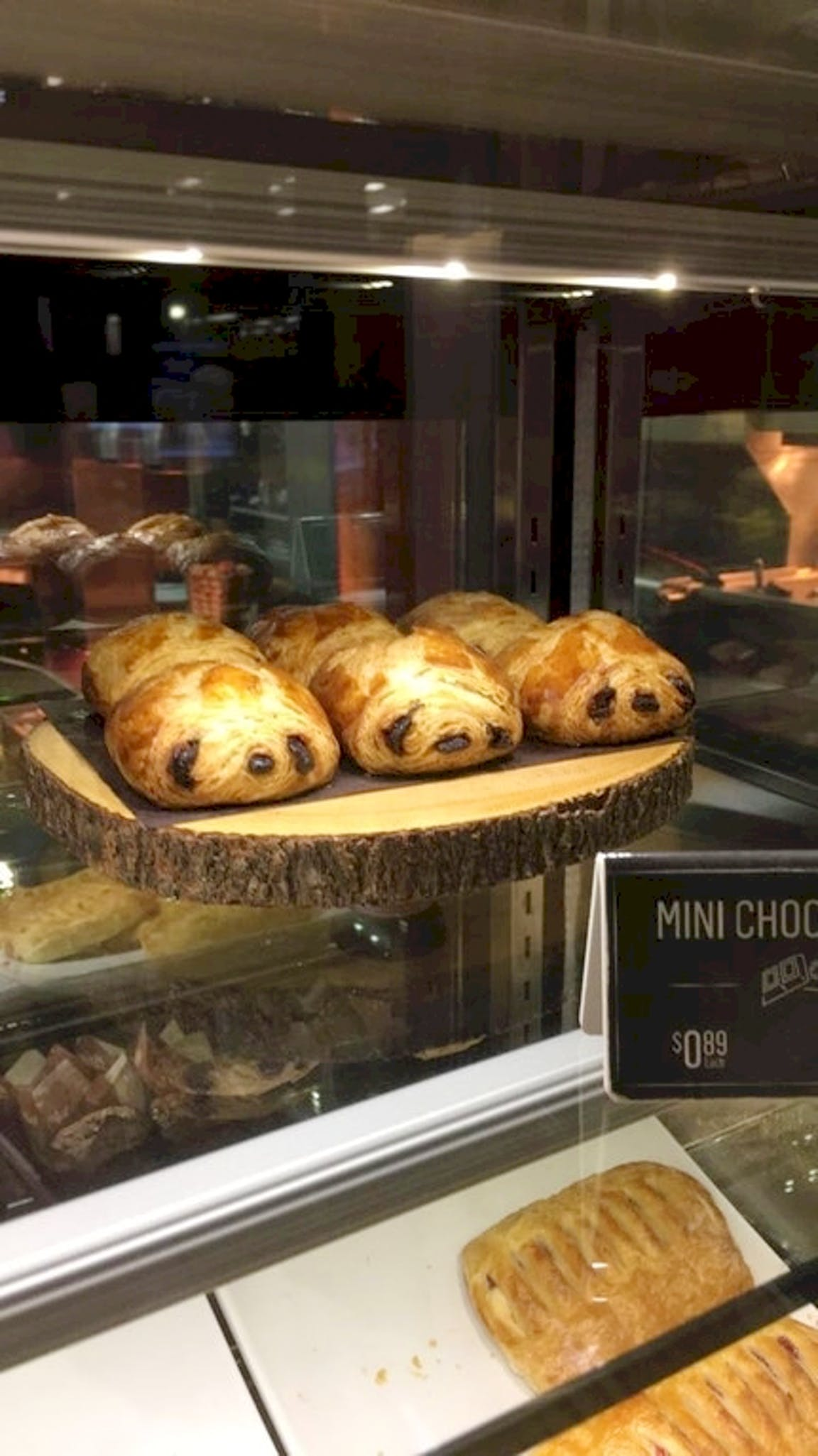25張「需要很多巧合才拍到」的驚奇瞬間 麵包烤好卻變成了樹懶