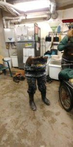 敬業保育員「跳入 20度天鵝池」工作 結束後「整雙腳留在原地」悲劇了...