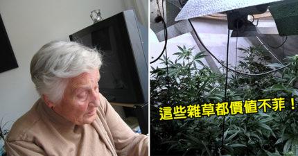 警察護送「搖晃老奶奶」回家 一打開門卻發現「會讓人興奮的雜草」轉角警局見~