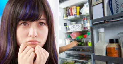 看冰箱擇偶!最新交友模式「看冰箱選追求者」絕對不會被騙
