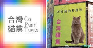 2020貓來承擔!政壇蹦出最萌「台灣貓黨」最萌3個黨義務 網笑:會被雷射筆玩弄