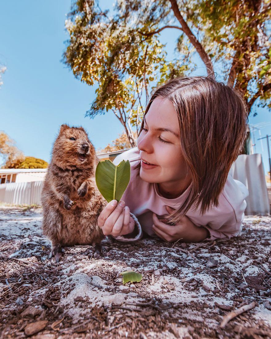 她在網路上看到「療癒矮袋鼠」可愛到受不了 買機票直奔澳洲只為幫牠拍這18張照片!