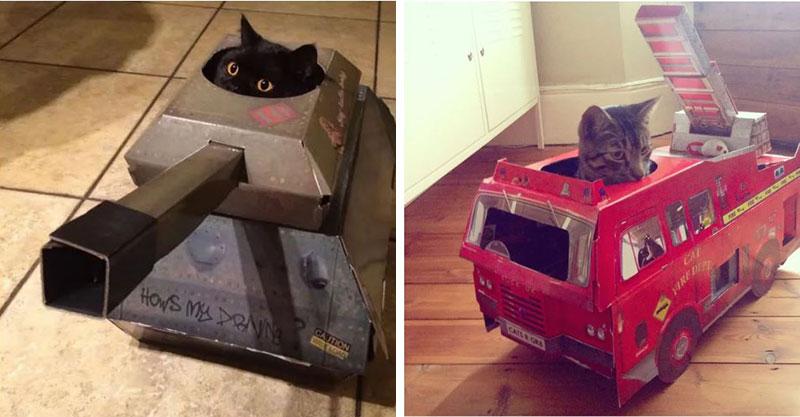 奴才幫貓皇設計「7種用來征服世界的工具」 貓用紙板直升機比黑鷹還霸氣!