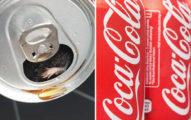 餓男買披薩配可樂喝到「一隻小手手」 仔細一看發現「整隻老鼠」當配料崩潰了...