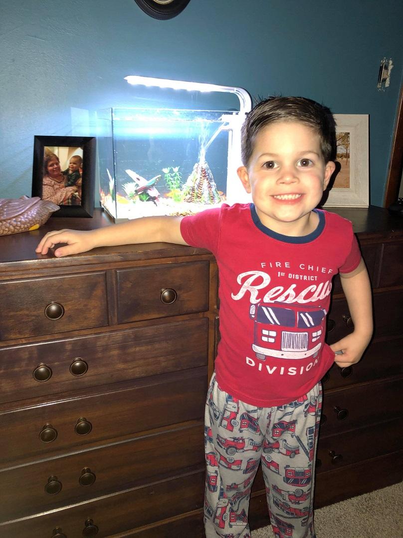 男童太喜歡小寵物「連睡覺都要一起」 媽媽早上發現「空的魚缸」已經來不及了