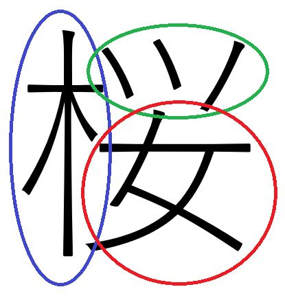 網友好奇為什麼「櫻」要這樣寫?拆解完驚覺裡面竟「藏了整個賞櫻行程」