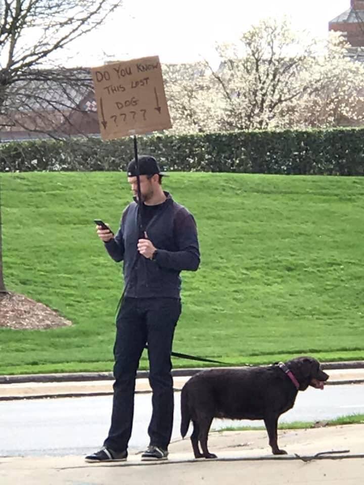 暖男遇走失狗陪牠「站路邊等主人」 像傻子「舉牌2天」奇蹟出現後變英雄!