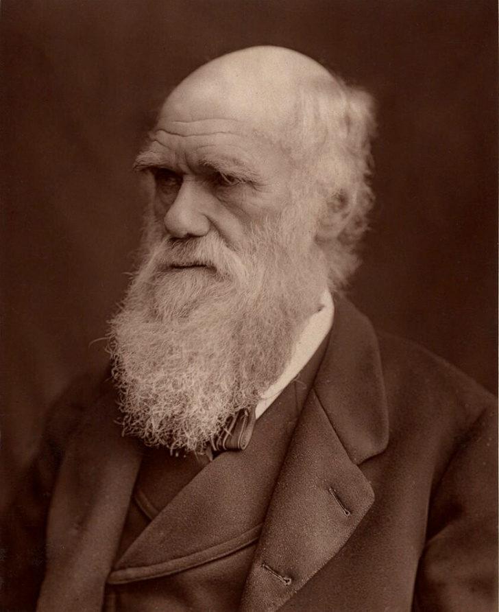 12個「連歷史老師都不知道」的名人冷知識 達爾文的弱點跟大多數女生一樣!
