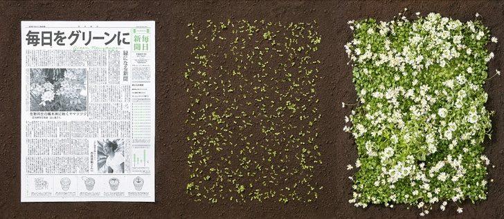 8個「可以讓人類在地球住久一點」的超偉大發明 可以種草的報紙!