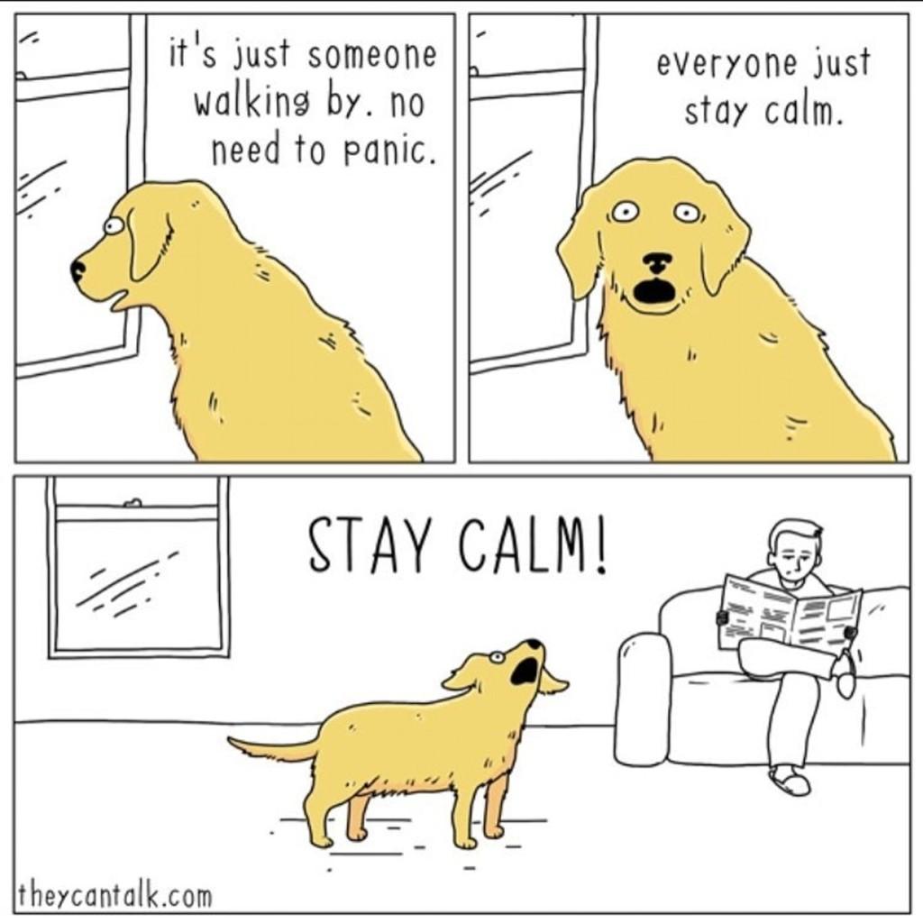 如果動物會說話!20張毛孩之間的「超心機對話」爆笑插畫