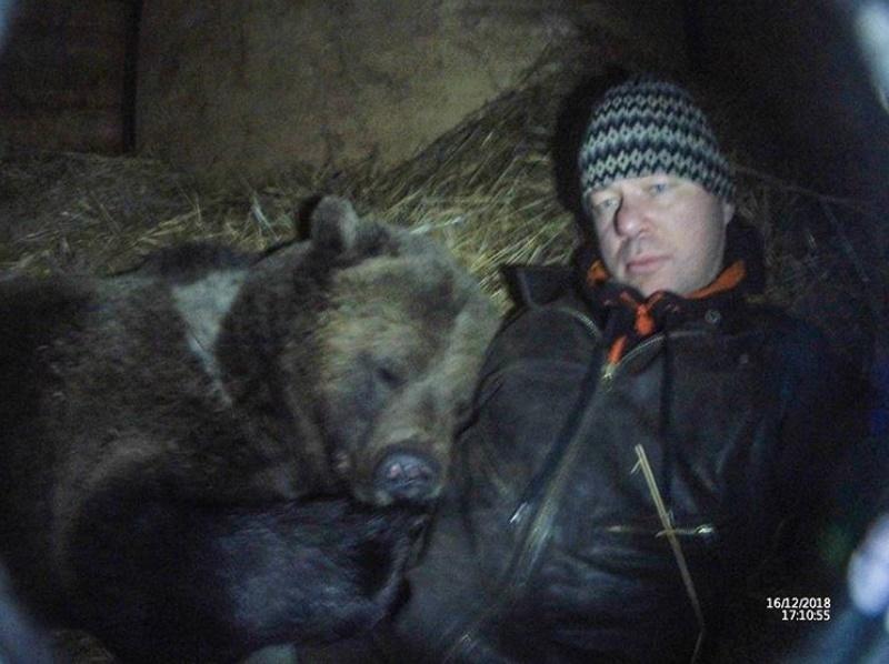流浪小棕熊遇暖男飛行員成「史上最萌機師」 他每天花2小時陪冬眠:絕不會拋棄他