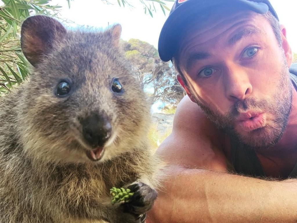 克里斯漢斯沃分享跟「澳洲小寶貝的親密自拍」 粉絲找到「他用嘴巴親餵」的影片崩潰:想投胎❤️️