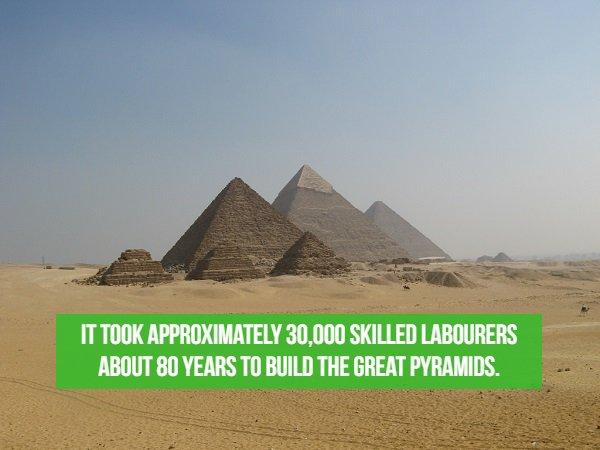 20個「有點廢可是很有趣」的世界各地冷知識 美國有2億人把「迷你鐵箱」當家!