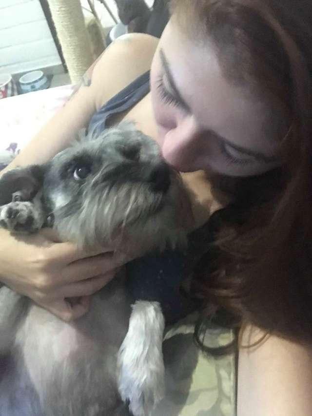 愛犬每次吃東西都會「剛好剩一半」 她發現真相後爆淚:抱歉讓你辛苦了…