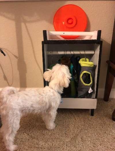 狗狗「太愛買衣服」抽屜塞不下...毛奴直接打造「超精美衣櫃」讓網友下輩子也想當狗!