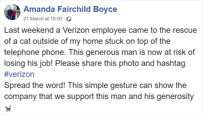 電信工「賣命解救貓咪」卻被公司狠心解僱 網友決定幫「真英雄」出一口氣!