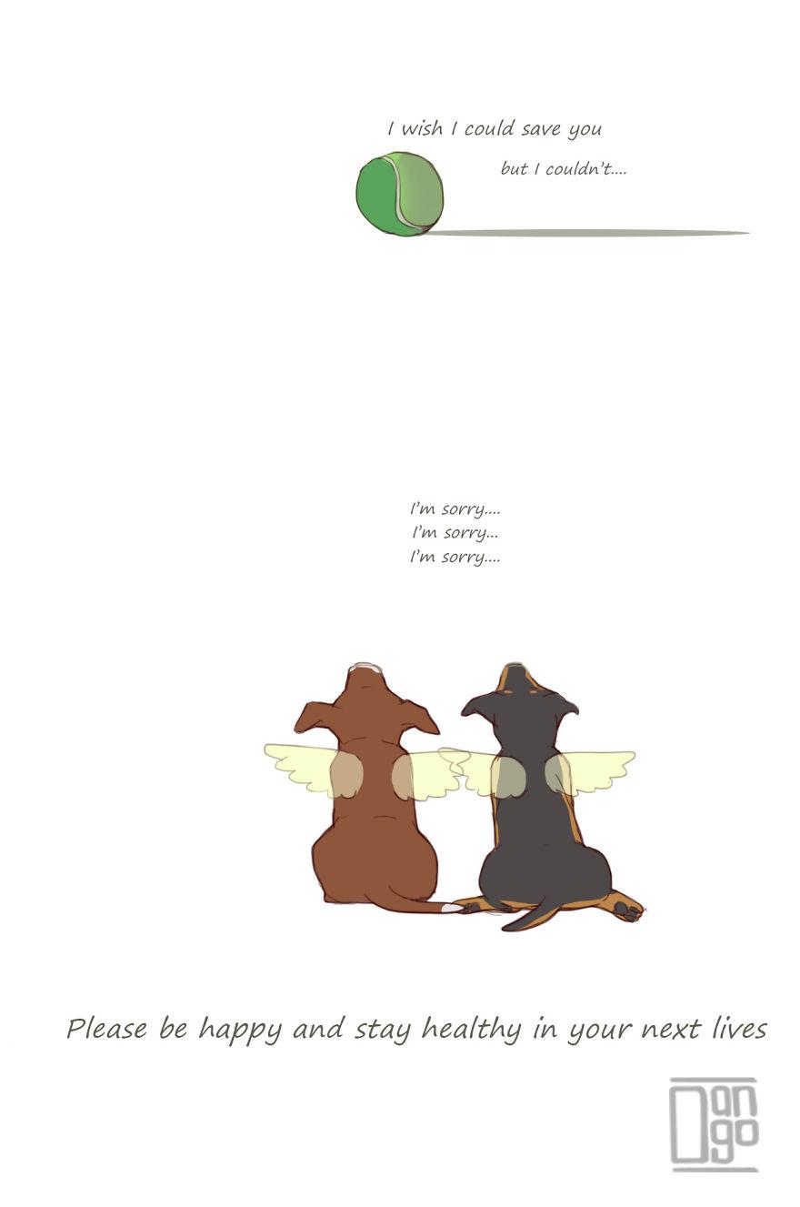 他用插畫紀錄與狗狗們最幸福的時光 但結局...卻是所有主人心中「最大的恐懼」
