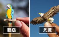 20張「小到要用放大鏡看」的微型逼真紙雕小鳥 最小的那隻竟然跟指甲差不多大!