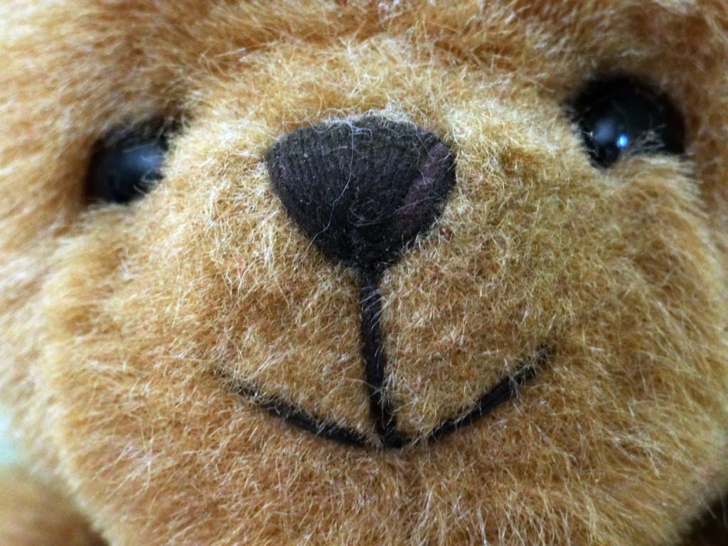 17個出現在電影「但其實真的發生過」的可怕事實 「因泰迪熊上天堂」的人比真熊還多!