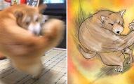 柴柴玩耍慘被拍成「肌肉右勾犬」!神人做出「3D版本」網笑崩潰:看一次就回不去了