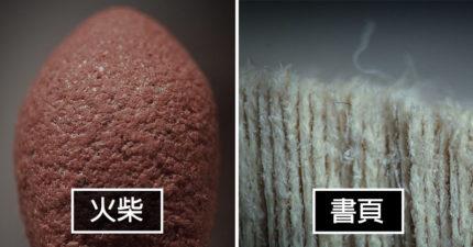 21個日常物品在「顯微鏡下」超驚奇模樣 黴菌超像薩諾斯彈指後的世界!