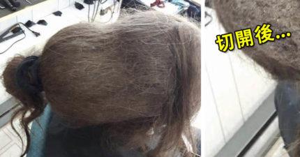 她帶著「大坨灰色葫蘆」上髮廊!一手切開「剖面圖」讓網哀嚎:不吃全麥吐司了