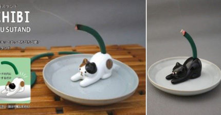 位置超尷尬的「貓尾巴蚊香座」日本爆紅!「深海鮟鱇魚」版本超可愛:真的是小燈籠❤