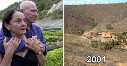 善良夫婦花20年把「荒地→森林」!讓300種動物重回家園、種400萬棵樹…網:人類要珍惜