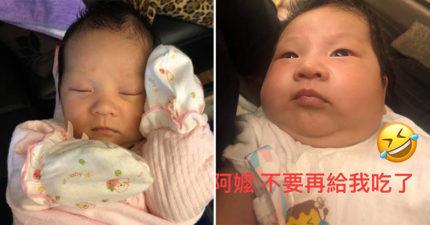 超萌女嬰「給阿嬤養1個月」大2倍 「鵝蛋臉→嘴邊肉滿出來」網友噴笑:阿嬤覺得她餓!