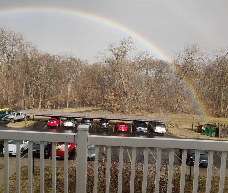 20張「運氣夠差才看得到」日常驚奇畫面 彩虹從垃圾桶裡長出來!