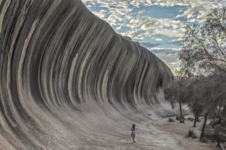 20張「全世界只有2%人能親眼見證」的大自然奇觀 沙漠變成百花齊放的花園!