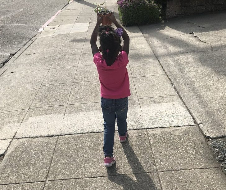 16張讓你「忍不住嘴角上揚」的超暖心照 發現植物照不到陽光...小女孩直接「遛植物」!