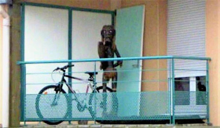 15個「Google街景車」拍到的經典獵奇畫面 法國的「超詭異生物」嚇到民眾瘋狂投訴!