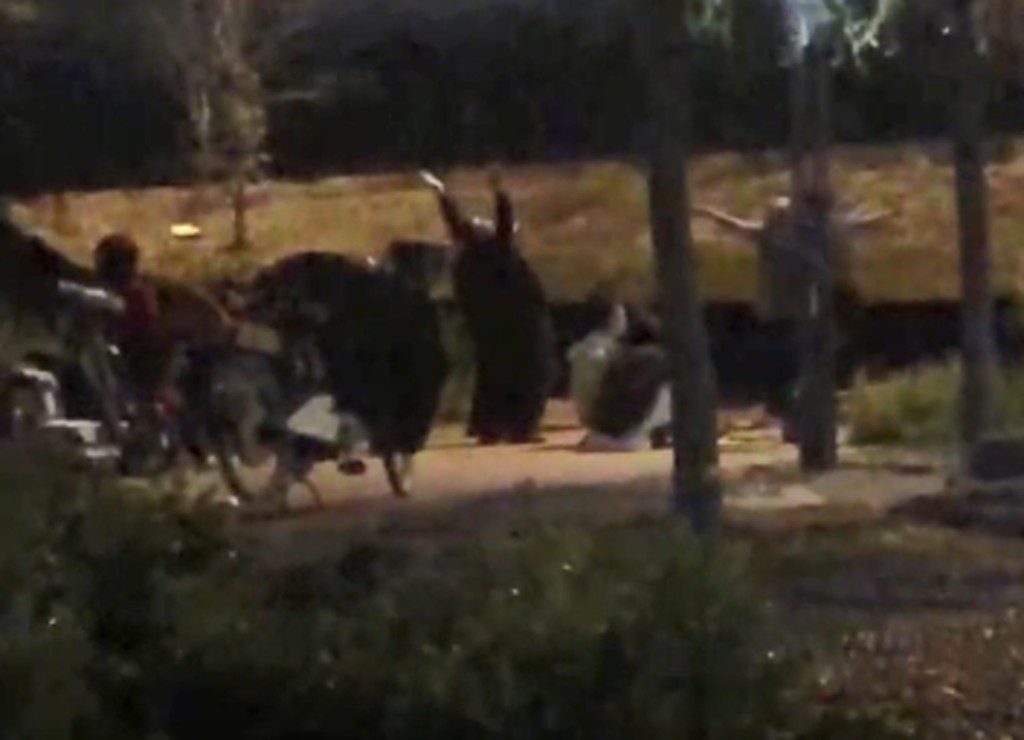 大嬸團迷上每晚約在公園「大笑養生」 居民「靈魂被直擊」求饒:寧可妳們跳廣場舞!