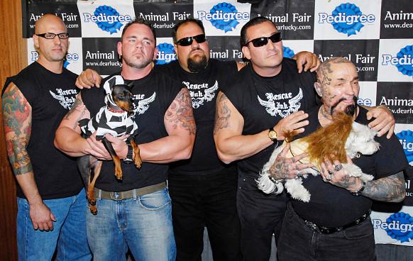 「大隻肌肉男幫派」靠兇狠外表把動物「從惡主人手中救出來」 連知名巨星都是粉絲!