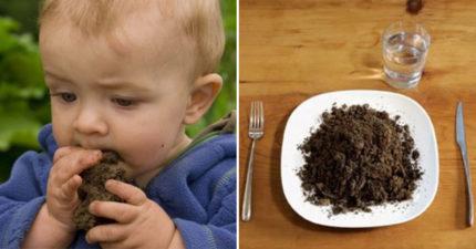研究證實「吃土」可以幫助減肥 脂肪被「包起來」比吃藥還有效!