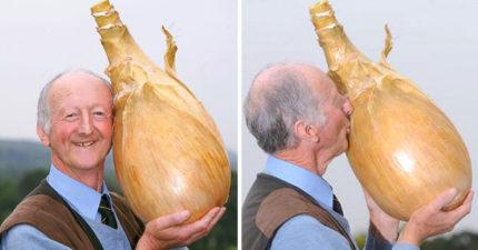 15個「完全是蔬菜界浩克」的超巨大品種 他拔出一個長了「10隻腳」的蘿蔔!