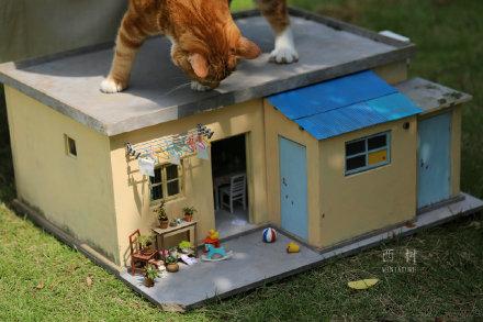 袖珍藝術家做出古城卻遭「貓星人入侵」 網看「呆萌打哈欠」驚呆:是喵吉拉!