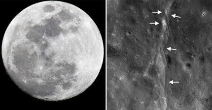 NASA發現月球表面「出現異常」緊急分析 專家驚呆:月亮縮小了?