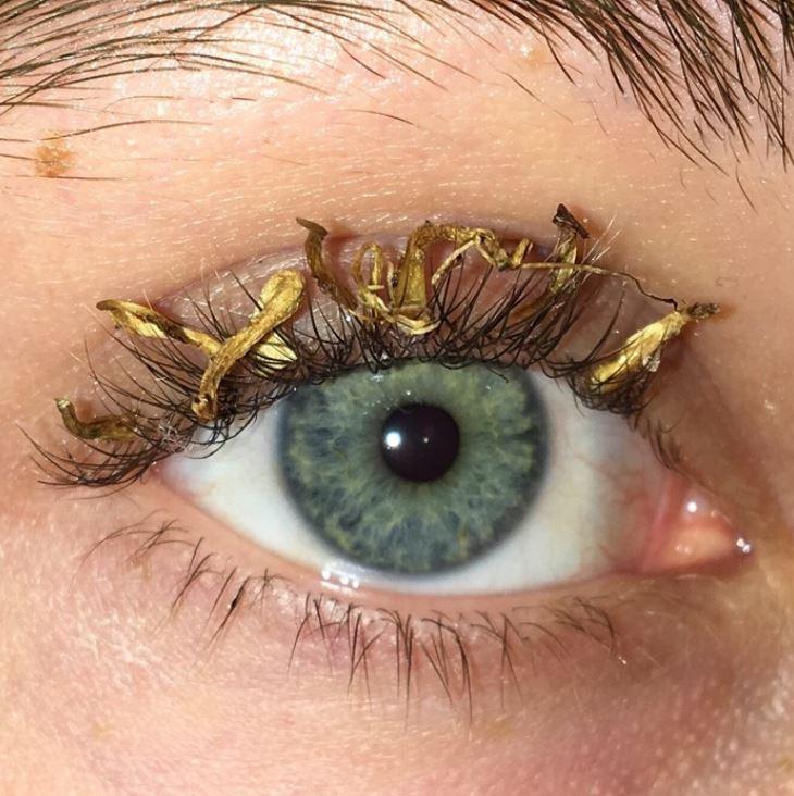 前衛化妝師掀起「泡麵睫毛」流行 網友大崩潰:以為是下面的毛...