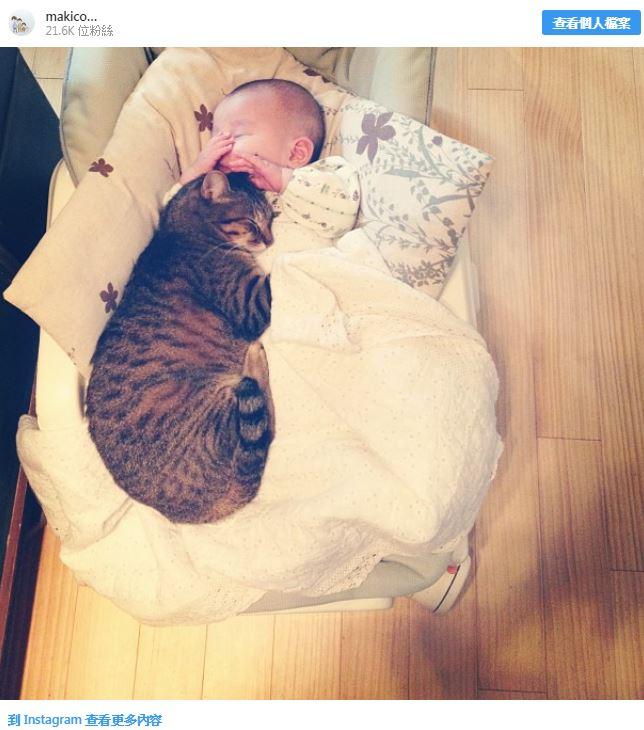 20張證明「動物最愛的人就是你」的超暖心照片 貓皇當起保姆哄寶寶睡覺❤